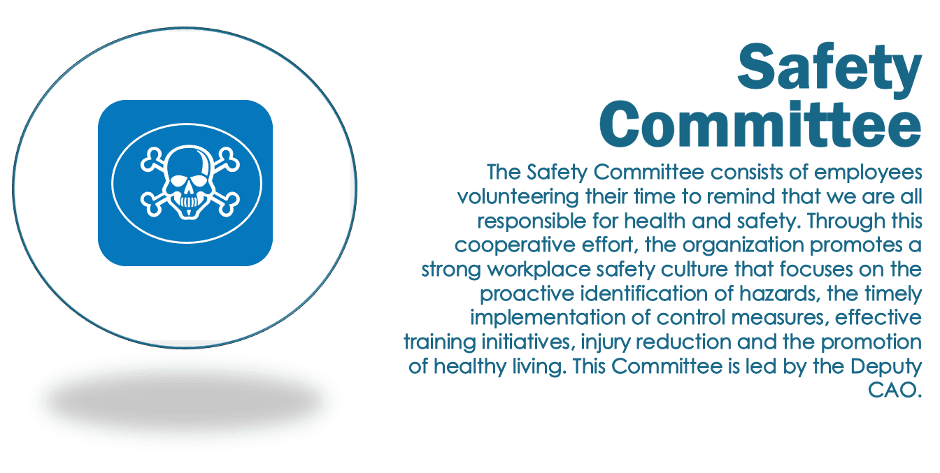 Description of the Safety Committee