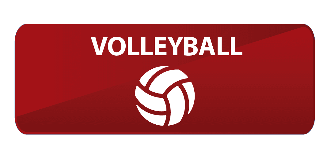 Volleyball Website Button