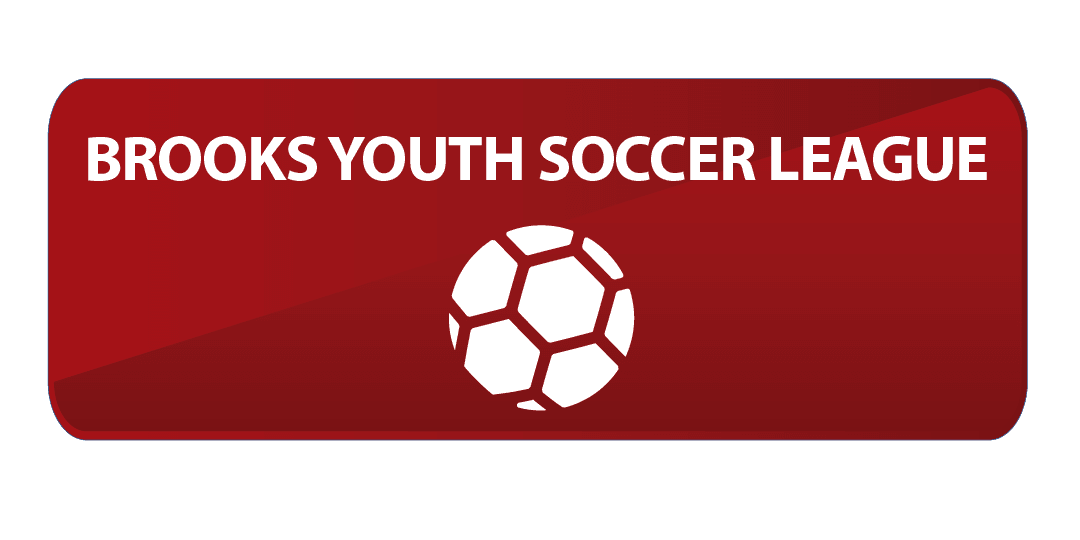 Youth Soccer Website Button